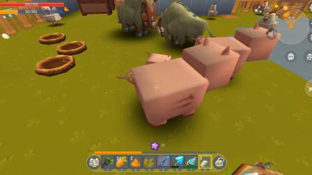 迷你世界高级生存:如何让小猪快速长大,原来这么简单