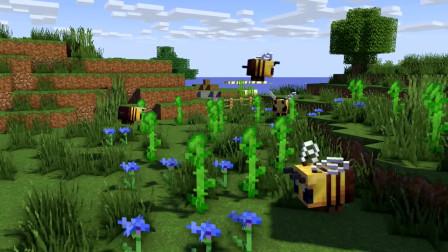 我的世界动画-怪物学院-蜜蜂农场-PlataBush