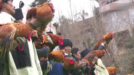 美姑县农业农村局《丰收节宣传片》初审
