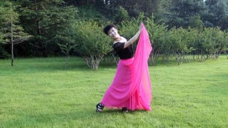 广场舞《两只蝴蝶》