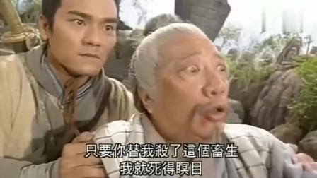 碧血剑大结局 袁承志 夏雪宜 木桑道人联手对付玉真子 精彩打斗