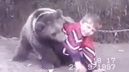 MMA轻量级小鹰,从小与熊一起摔跤,小时候就这么愣啊