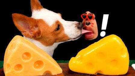 ☆ Real Mouth ☆ 汤姆和杰瑞同款特制狗狗奶酪、埃曼塔奶酪蛋糕 食音咀嚼音(新)