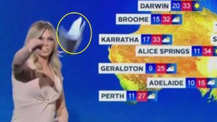 天气预报女主播突然扔掉手稿离开,同事尴尬应对、语无伦次