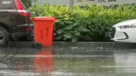 共度晨光 2019 未来三天 华西等地降雨持续