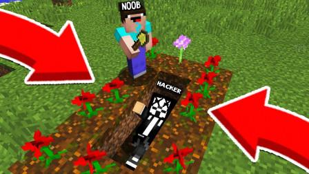 我的世界MC动画:新手挖了坟墓,在这个村子里找到了黑客