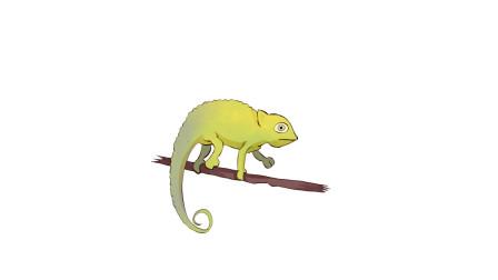 暖光绘画课堂,教你画简笔画变色龙,可以改变身体颜色的神奇蜥蜴