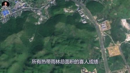 美国卫星曾在中国拍到这一幕,让世界各国不得不服:中国的确厉害