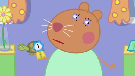 仓鼠兽医认为乌龟小土豆获得第一名实至名归