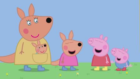 袋鼠妈妈带着凯莉和迪安来和佩奇,乔治打招呼