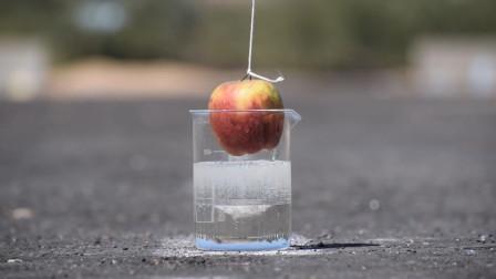 食人鱼溶液究竟有多毒?看看苹果的下场,请托好你的下巴!