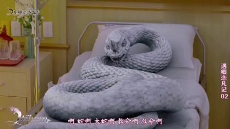 遇卿恋凡记:女主在医院睡着后现出白蛇原形,护士吓得拔腿就跑