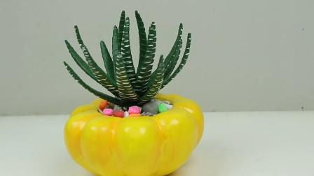 创意手工DIY,看看如何用纸板制作芦荟盆栽,非常简单!