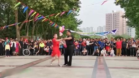 《听心》四步交谊舞 风情万种的舞姿,让人刮目相看