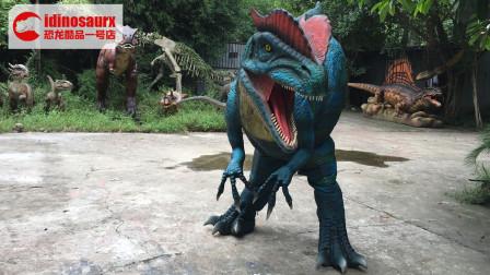 藏腿双冠龙表演服-恐龙娱乐道具