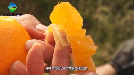 秋季空气干燥,皮肤容易缺水,这几种水果便宜好吃,又可以美容护肤
