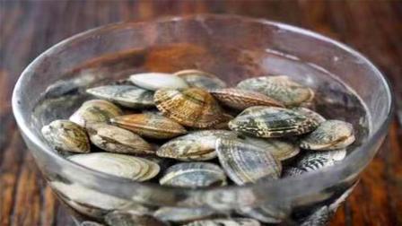 原来花蛤吐沙这么简单,水里滴几滴,花蛤立马张嘴吐沙,干干净净