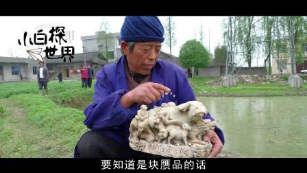 """湖南一老汉藕田中发现""""奇石"""",不给几十万坚决不卖,专家鉴定后太悲惨了"""