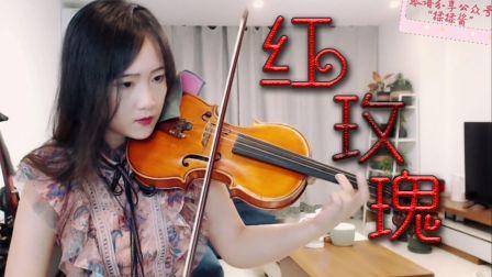 【小提琴/揉揉酱】《红玫瑰》cover:陈奕迅