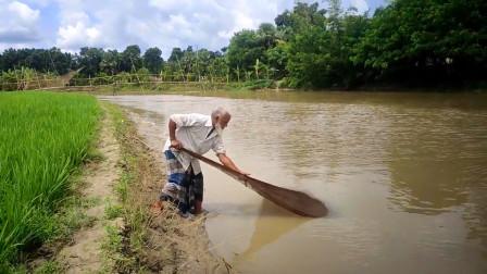 农村老爷爷野外捕鱼,一网下去,看看收获了多少鱼儿?