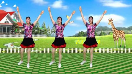 步子舞《借点情借点爱》四个方向跳 简单易学