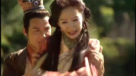寻秦记:雅夫人眼看逃不了,为了救儿子,自己却落入了赵穆之手
