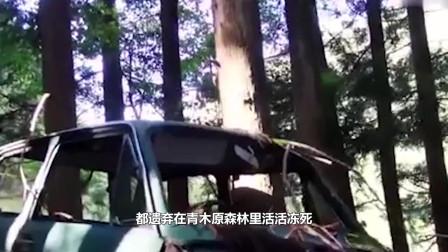 """世界上最""""恐怖""""的森林,每走一段路就发现一具尸体,原因为何"""