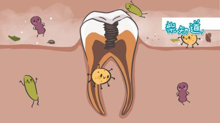 与300多种口腔细菌共处,如何保护牙齿?