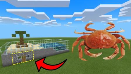 我的世界战斗动画:如何在螃蟹养殖场生活