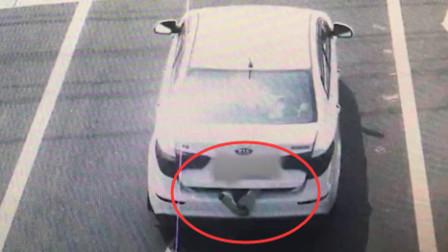 """轿车后备厢露出一双脚?警方查获后发现竟是""""一场乌龙"""""""