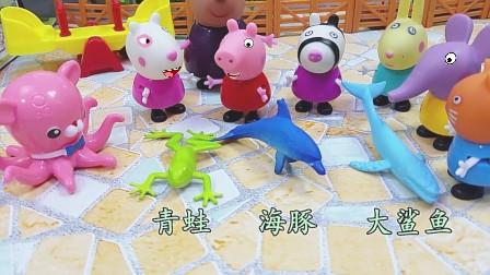 小猪佩奇爱学习上动物课认识了青蛙海豚和鲨鱼