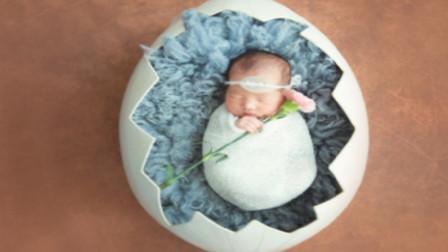 """世界上最小的婴儿,把蛋壳当成""""摇篮"""",如今变成什么样子了?"""