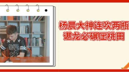 杨晨大神预测谌龙必碾压桃田进入决赛