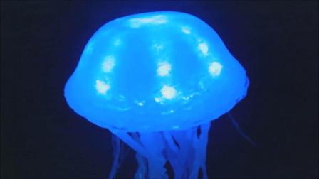 创意手工DIY:用胶水制作水母灯,太有创意了吧