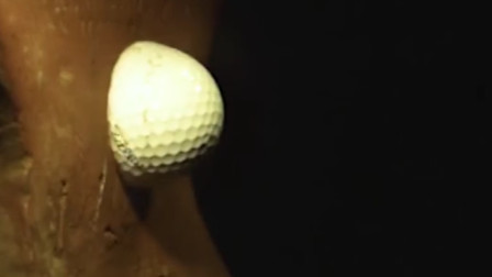 当高尔夫球的时速达到800公里,撞在铁砧上会爆开吗?网友:可怕
