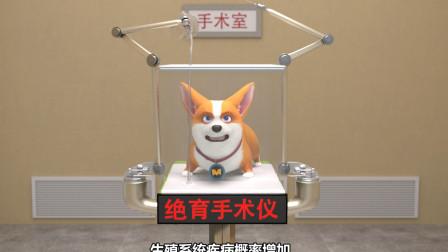 飛狗MOCO | 我的狗生,就這樣被毀了?