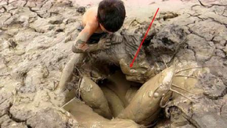 """小男孩用力搬开干涸的泥块,没想到水洼里挖出一群""""巨无霸""""!"""