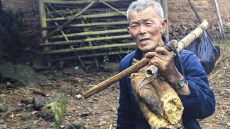 69岁老汉深山挖笋, 土坡里传来怪响, 一锄头下去发家致富了
