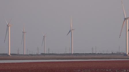 东营红海滩 音乐视频