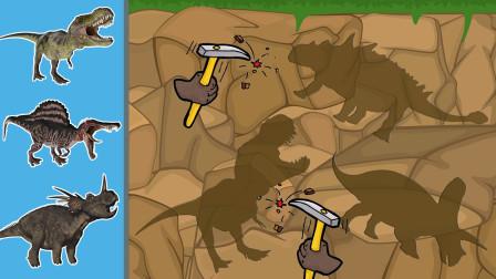 跟着小朋友们一起去探索恐龙化石