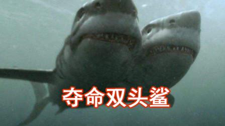 【夺命双头鲨】鲨鱼变异长出两个头,学生们出海碰上,智斗双头鲨