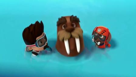 华丽在水中被网子给缠住,狗狗们带上潜水艇,下水救华丽!