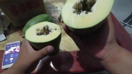 【李厂长】拼夕夕果园木瓜开箱视频