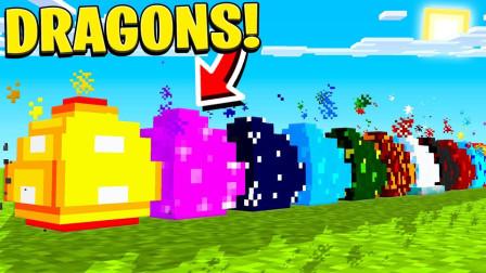 我的世界万龙朝凤钻石大陆:所有龙蛋孵化!驯养万种龙!