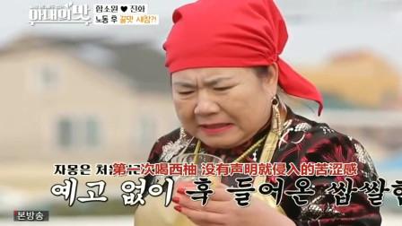 妻子的味道:咸素媛心疼公婆,自制水果茶饮料,中国婆婆:一杯要人命!