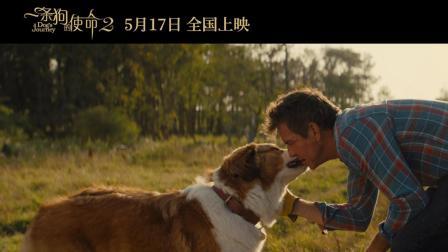 《一条狗的使命2》曝终极预告 今夏最强催泪弹来袭