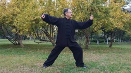成都著名太极拳教练王建强老师传統杨氏太极拳教学培訓115式(背面)