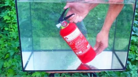 趣味实验:外国小哥将灭火器放在水中,在水里喷出会有什么样效果