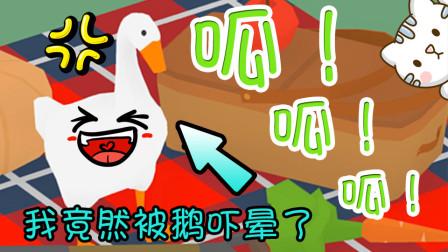 【逍遥小枫】我竟然被一只鹅吓的晕倒在地...