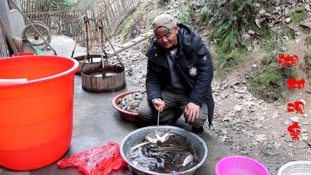 """农村有种叫""""白仙子""""的鱼,做鱼干特别好吃!你认识这鱼吗?"""